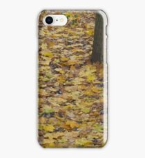 Image one hundred and thirty seven iPhone Case/Skin