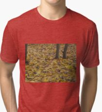Image one hundred and thirty seven Tri-blend T-Shirt