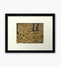 Image one hundred and thirty seven Framed Print