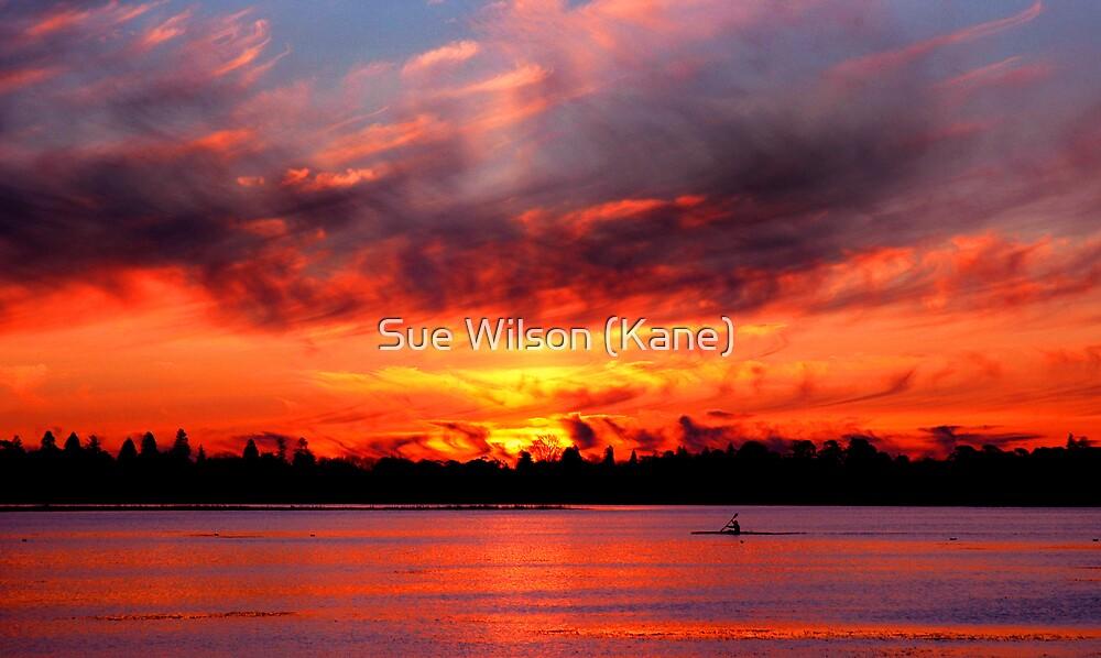 On fire by Sue Wilson (Kane)