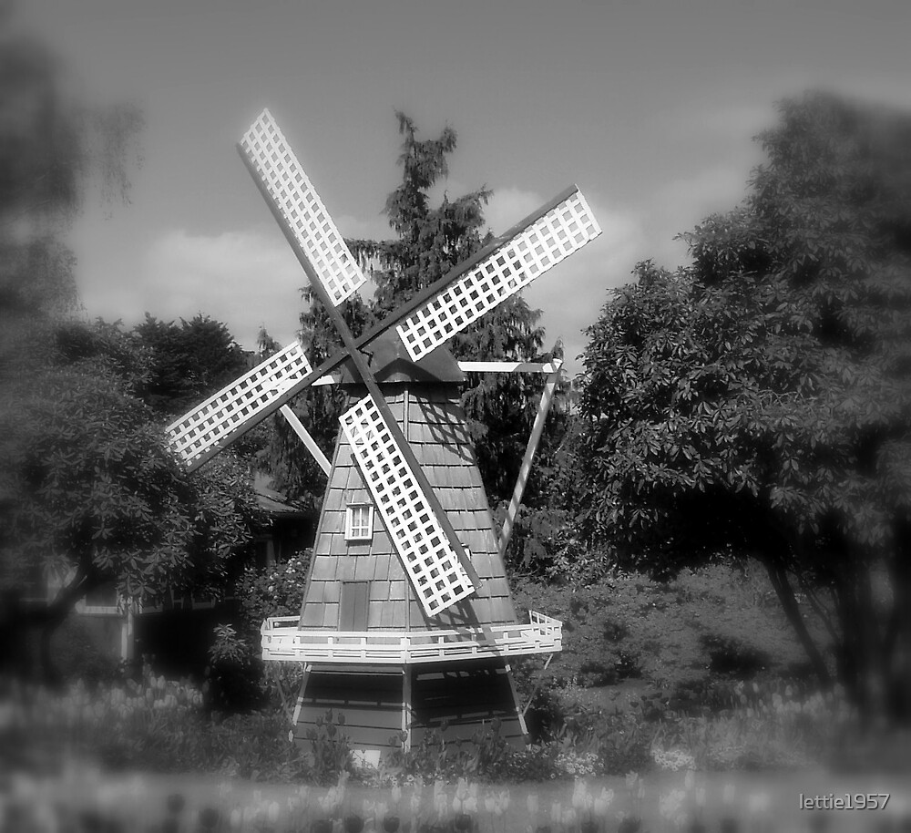 Windmill - and tulips  by lettie1957