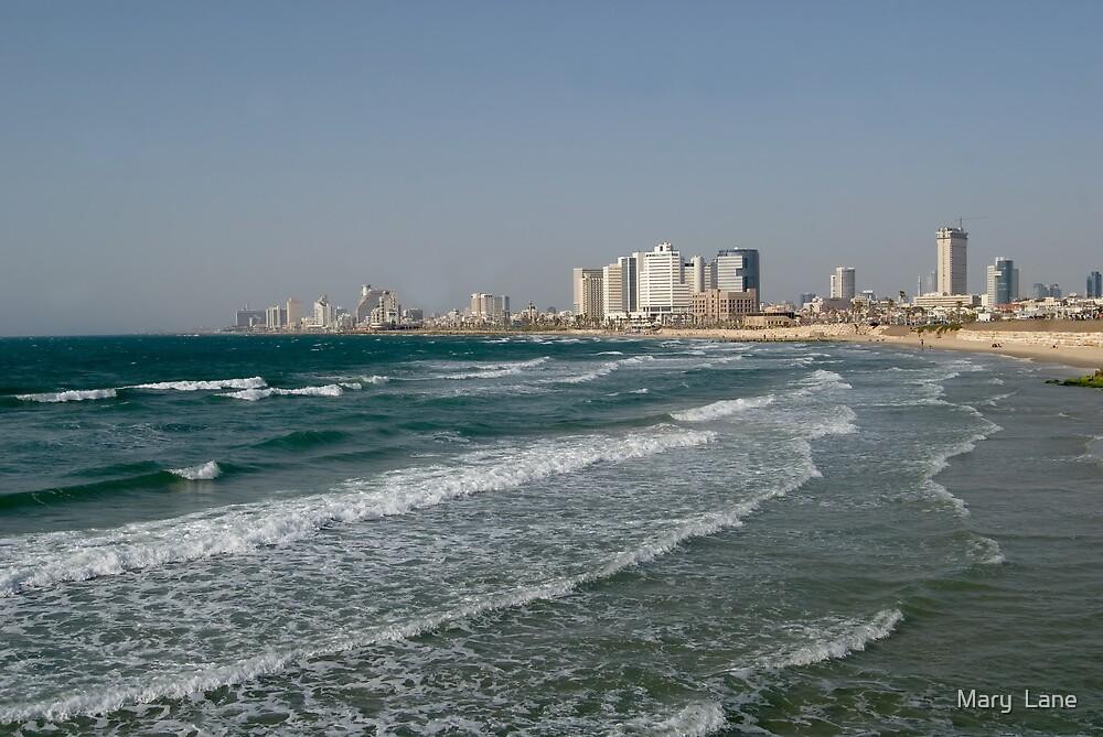 Tel Aviv Beach by Mary  Lane
