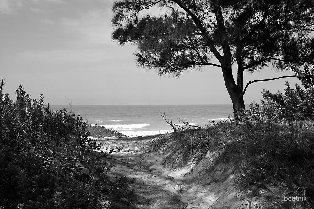 Bradenton Beach Path by beatnik
