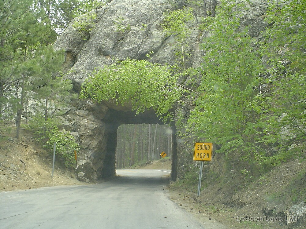 A Tunnel in the Road by DeBorah Davis, LMT
