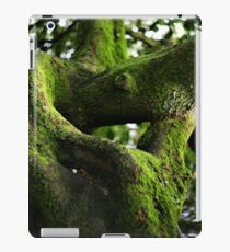 Twisted Tree Bokeh! iPad Case/Skin