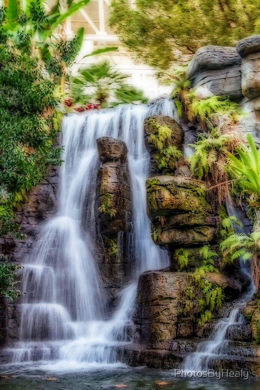 Tropical Falls by Photos by Healy