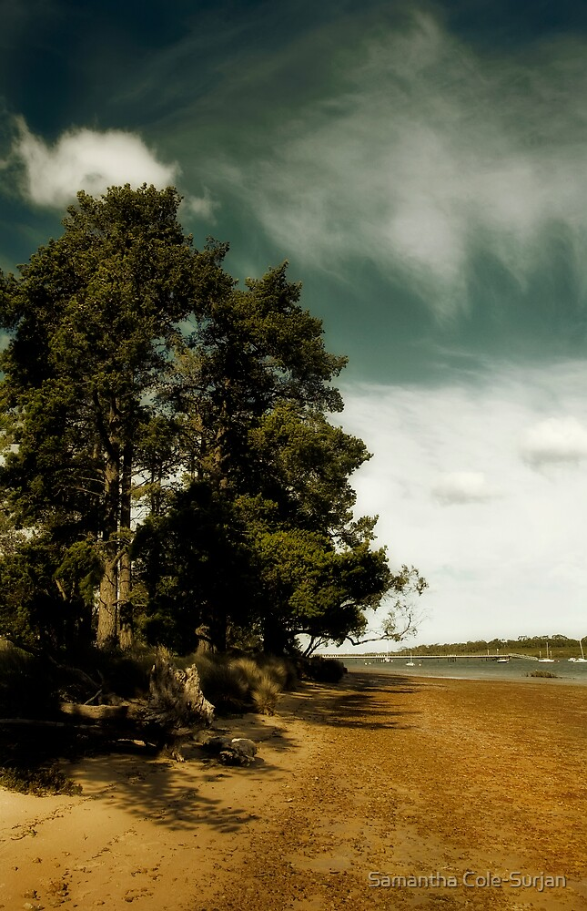 Standing Tall, Warneet by Samantha Cole-Surjan
