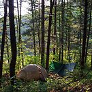 Forest Campsite in Gangwon Province by koreanrooftop