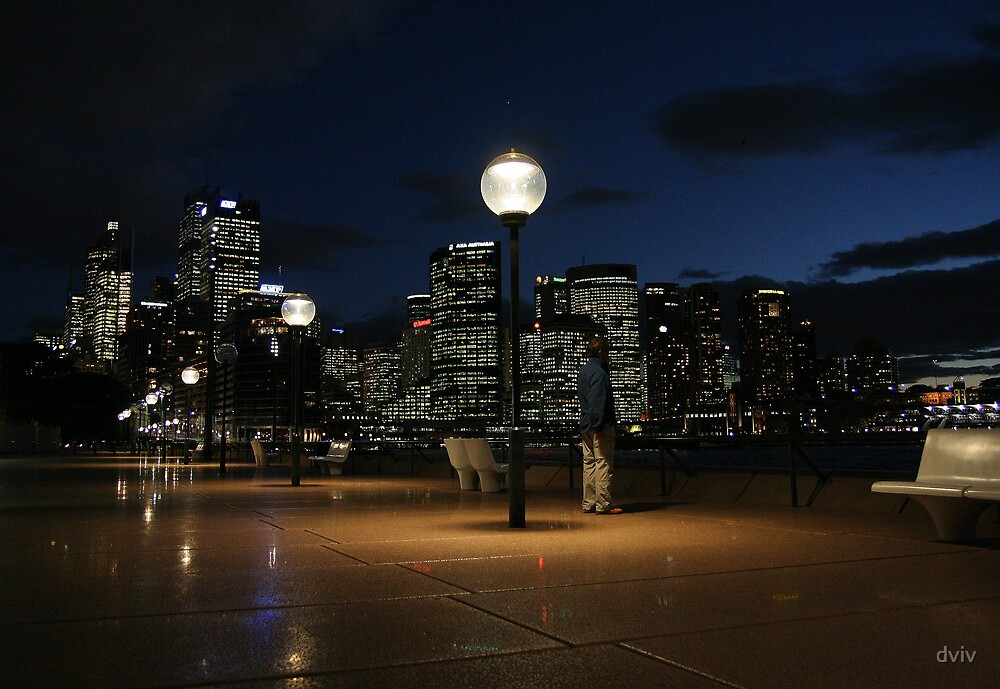 Sydney from the Opera House by dviv