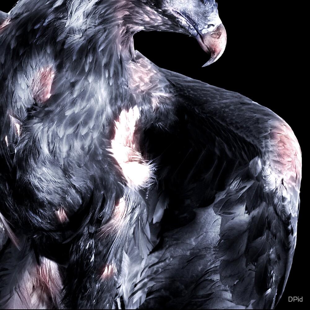 Eagleheist by DPid