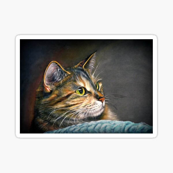 Maine Coon Tabby Cat Artwork Sticker