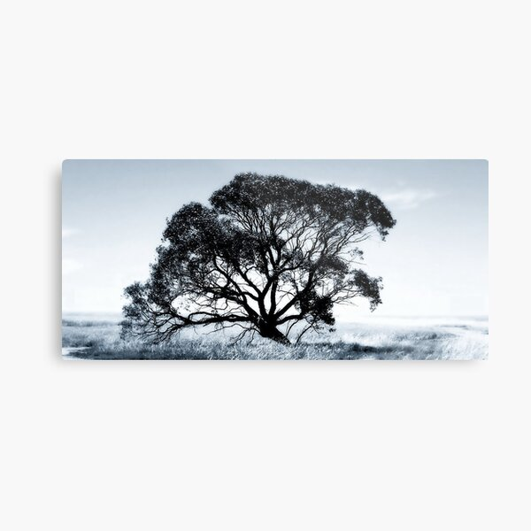 Wide Screen Love Metal Print