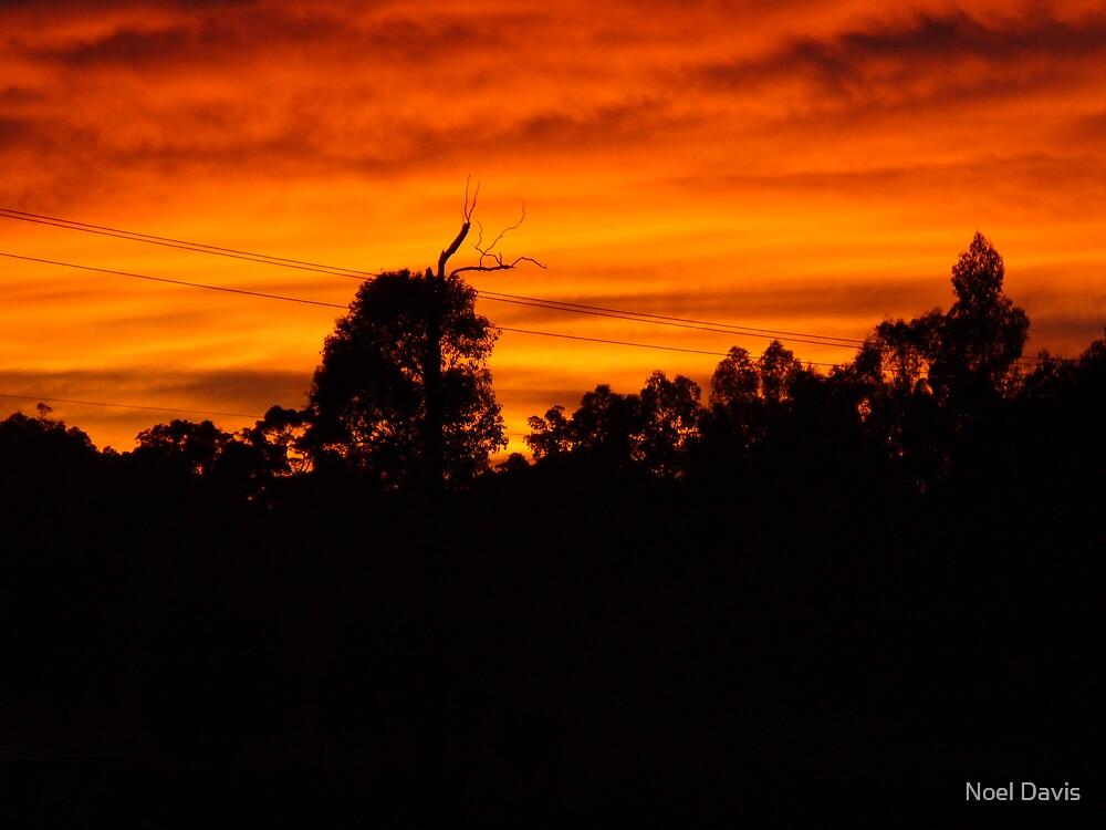 Sunrise. by Noel Davis