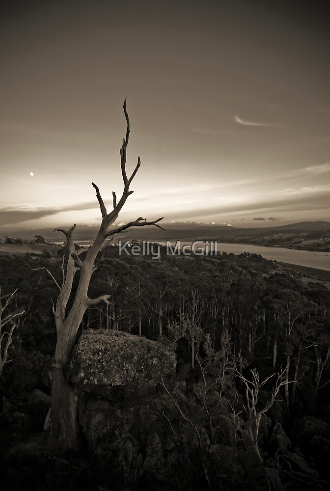 Sunset, Tamar Valley by Kelly McGill