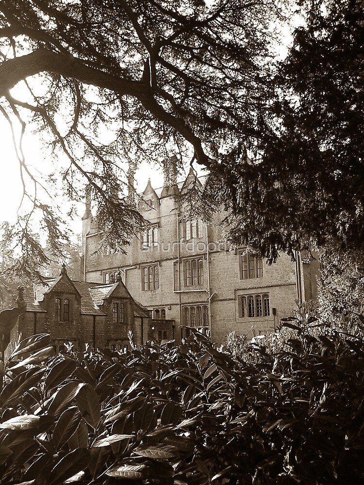 Dillington House, Somerset by snurfdood