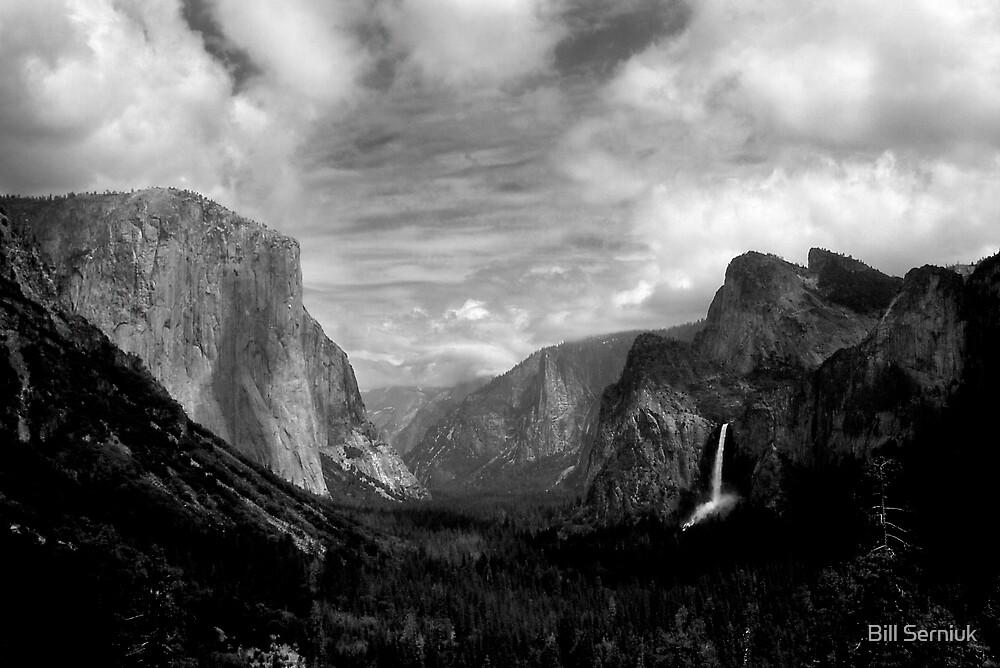 Yosemite Valley by Bill Serniuk