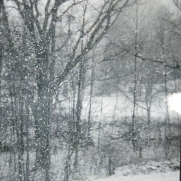 Blizzard by ellie25