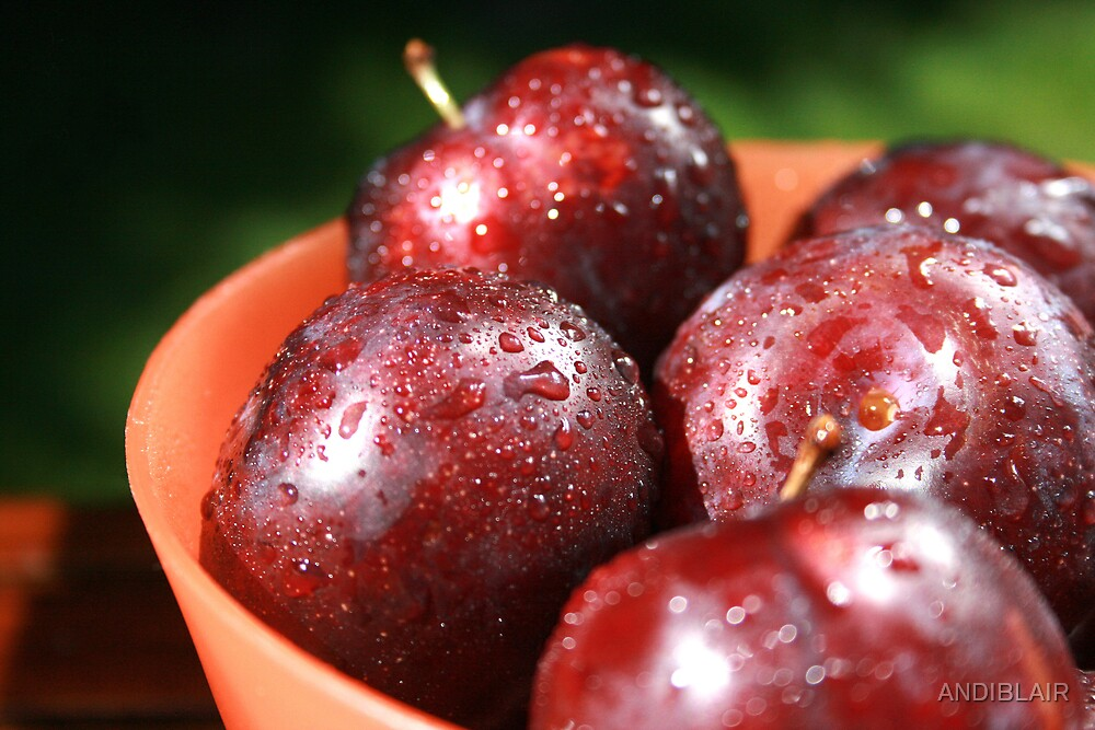 BOWL OF PLUMS by ANDIBLAIR