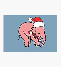 Delirium Tremens Christmas Beer Photographic Print