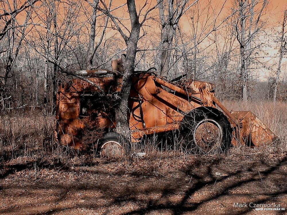 Past Prime by Mark Czerwonka