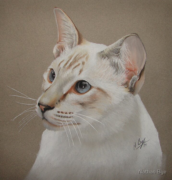 Cat Portrait 01 by Nathan Bye
