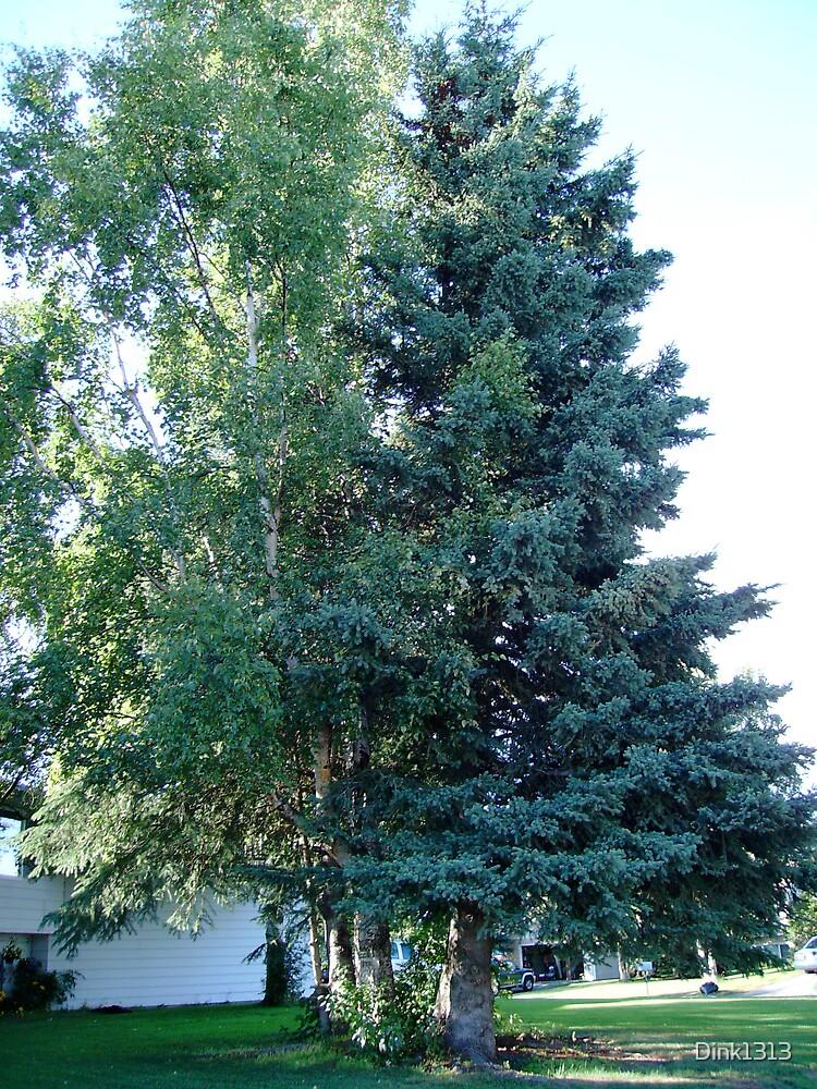Alaska size trees by Dink1313