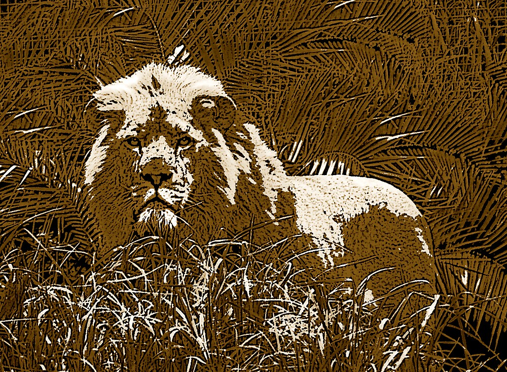 lion in brown by Carolyn