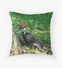 Young Pileated Woodpecker Throw Pillow
