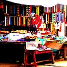 Colours of India 2 by ShootingSardar