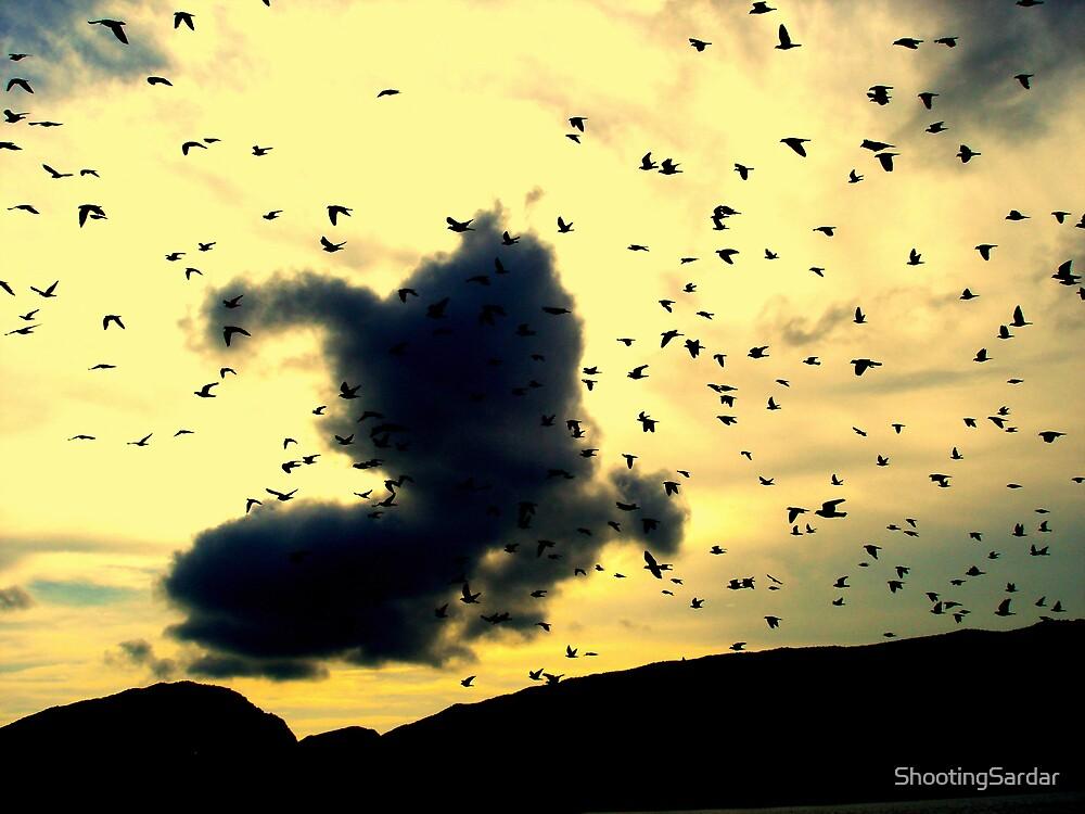Freedom Flight by ShootingSardar