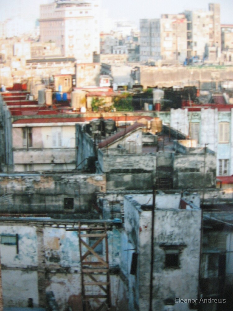 Havana-Mark 2 by Eleanor Andrews
