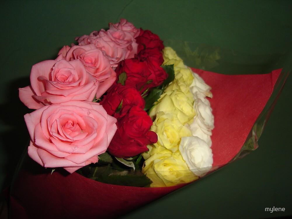 valentine roses by mylene