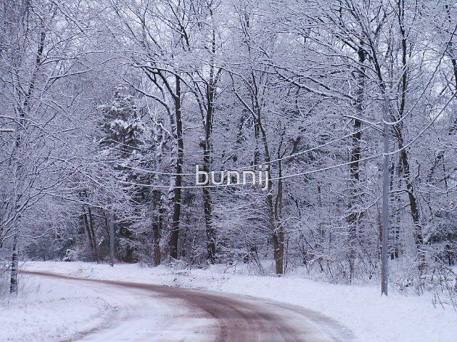 Snow Me the Way by bunnij