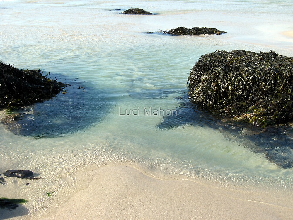 Rock Pools by Luci Mahon