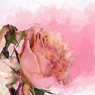 Old Master Roses by Catherine Hamilton-Veal  ©