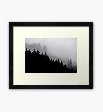 Tree Fog Forest - Not Tree Frog Forest (Cascadia Travel Trees) the misty trees in nature photograph Framed Print