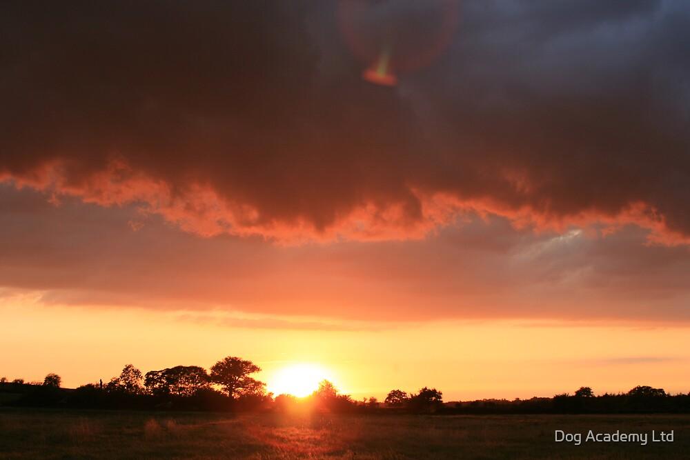 sunset over welwyn by Dog Academy Ltd