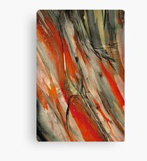 Snow Gum Bark Canvas Print