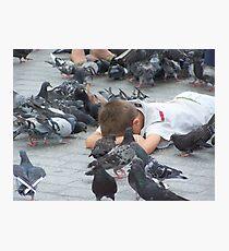 Pigeons... Photographic Print