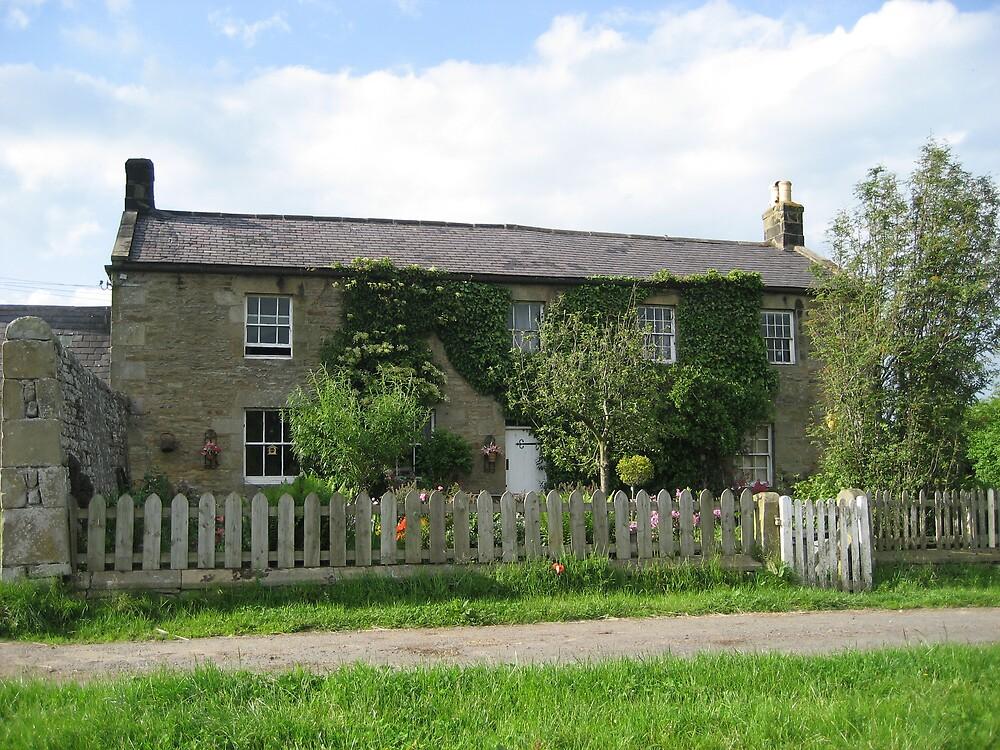 Farmhouse in Summer  by shelagh1312
