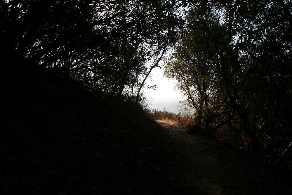 Topanga Canyon - 3 by Francis Alfred