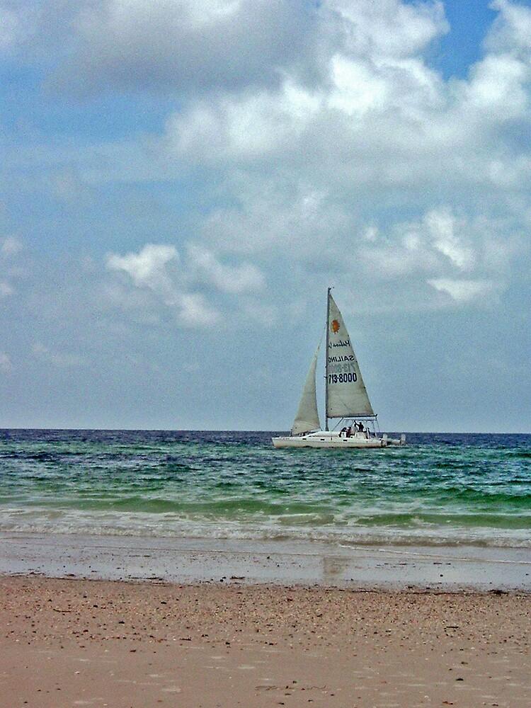 Sailboat 2 by Erika Benoit