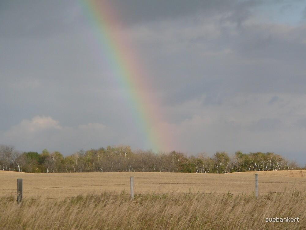 Rainbow by suebankert