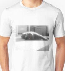 British Shorthair Blue Unisex T-Shirt