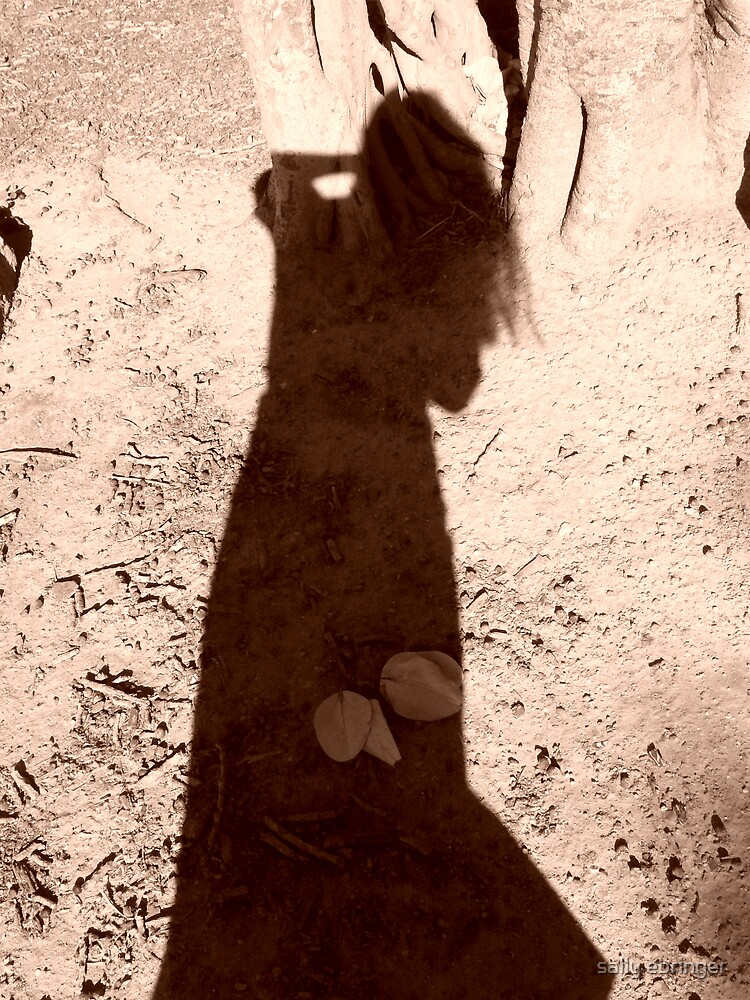 Shadow Dancing by sally ebringer