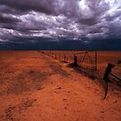 outback gate - NSW by Tony Middleton