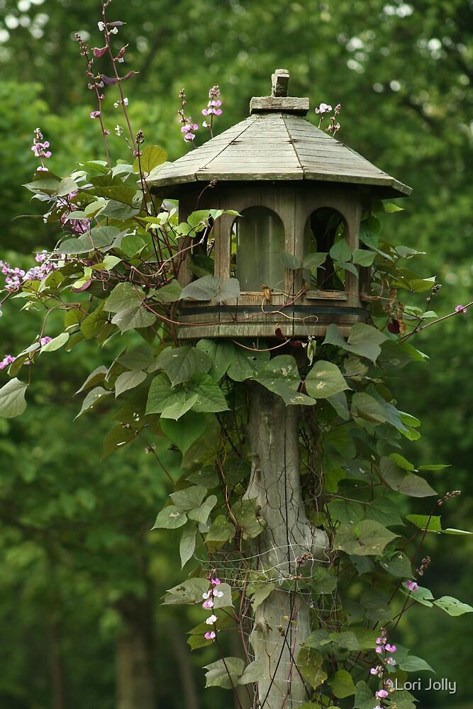 Birdhouse Vine by Lori Jolly