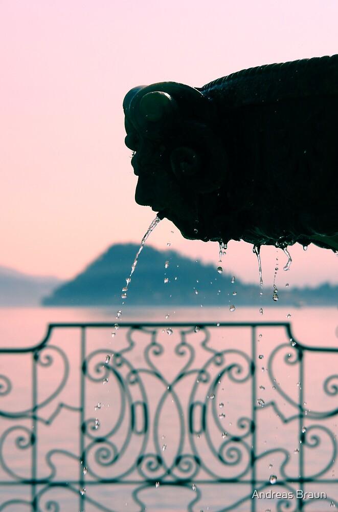 Fountain detail by Andreas Braun