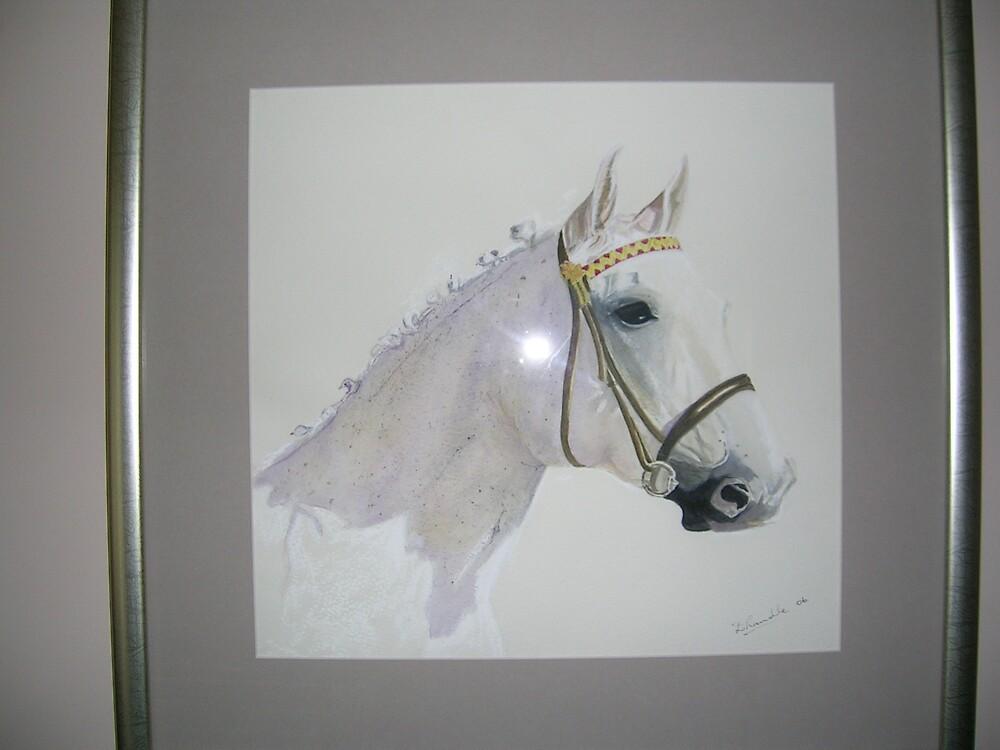 The Grey Pony by dorothy