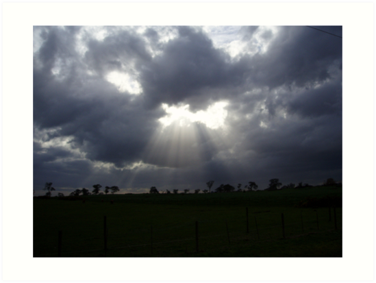 God's little Rays of sunshine by lettie1957